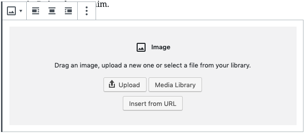 Options for adding an image to the image block including Upload, Media Library or Insert from URL